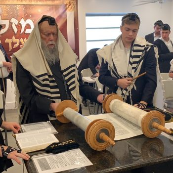 Rabbi Hillel David